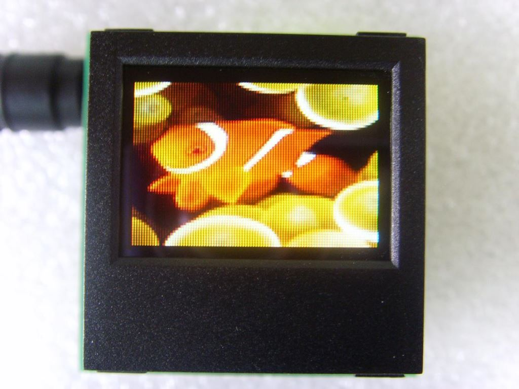 OLED Display 0.95 inch